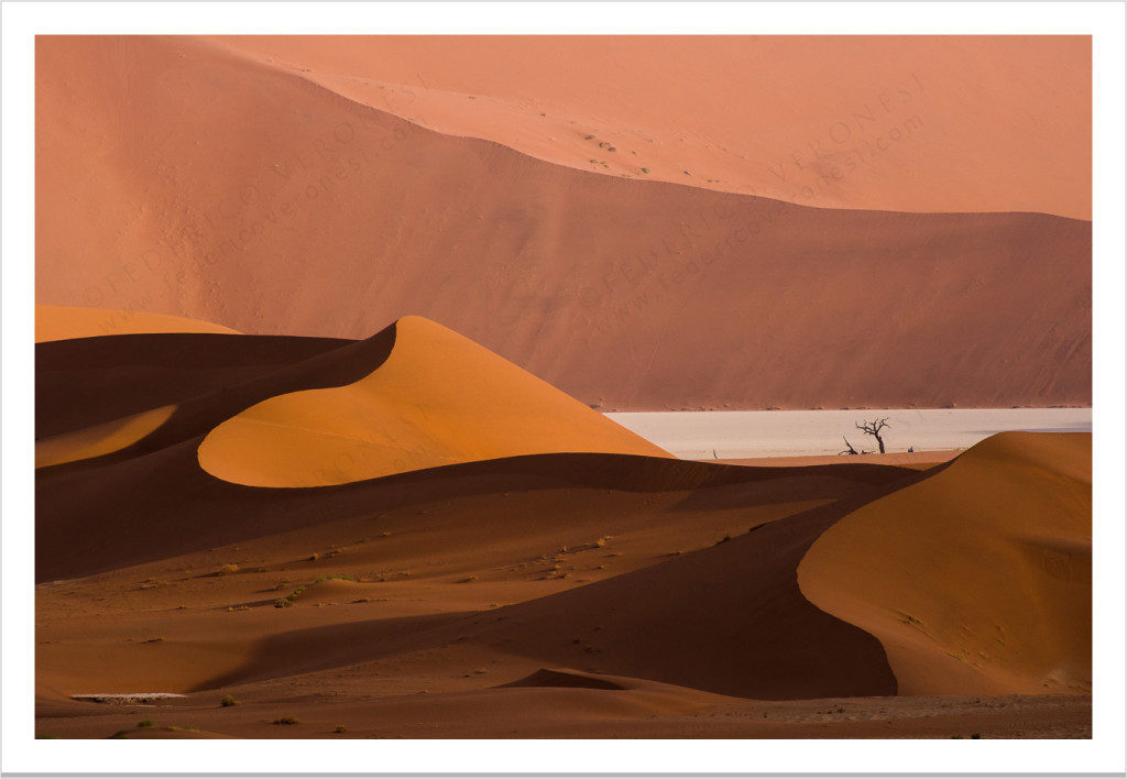Deadvlei_desert_wildlife-namibia-color_fine-art-print_08